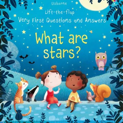 What Are Stars? - Katie Daynes Usborne Publishing carte cu clapete