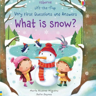 What is Snow? - Katie Daynes Usborne Publishing carte cu clapete