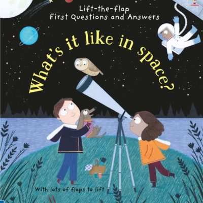 What's It Like In Space? - Katie Daynes Usborne Publishing carte cu clapete