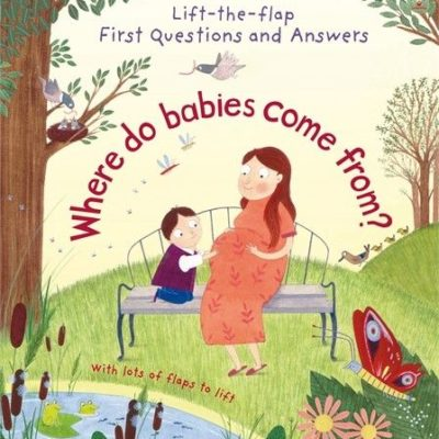 Lift-the-flap Where do babies come from - Katie Daynes Usborne Publishing carte cu clapete